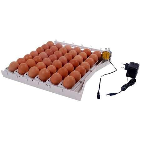 Bandeja De Volteo Automático Para Incubadoras 42 Huevos Grandes + 120 Pequeños AT-42Q