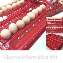 Bandeja de Volteo Automático por Arrastre Huevos Grandes y Pequeños Incubadoras