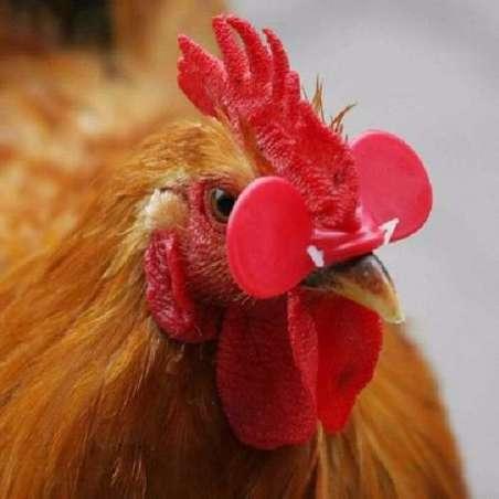 Gafas Antipicaje para Aves Cerradas con Clavija