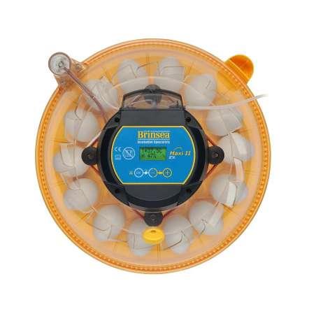 Incubadora Brinsea Maxi II Advance EX Volteo y Humedad Automáticos