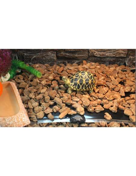 Manta termica 5W Tortugas